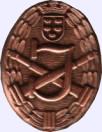 Bewerbsabzeichen Bronze
