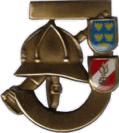 Leistungsabzeichen Bronze